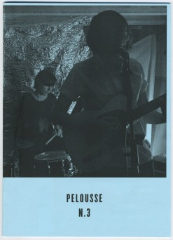 Pelousse_72